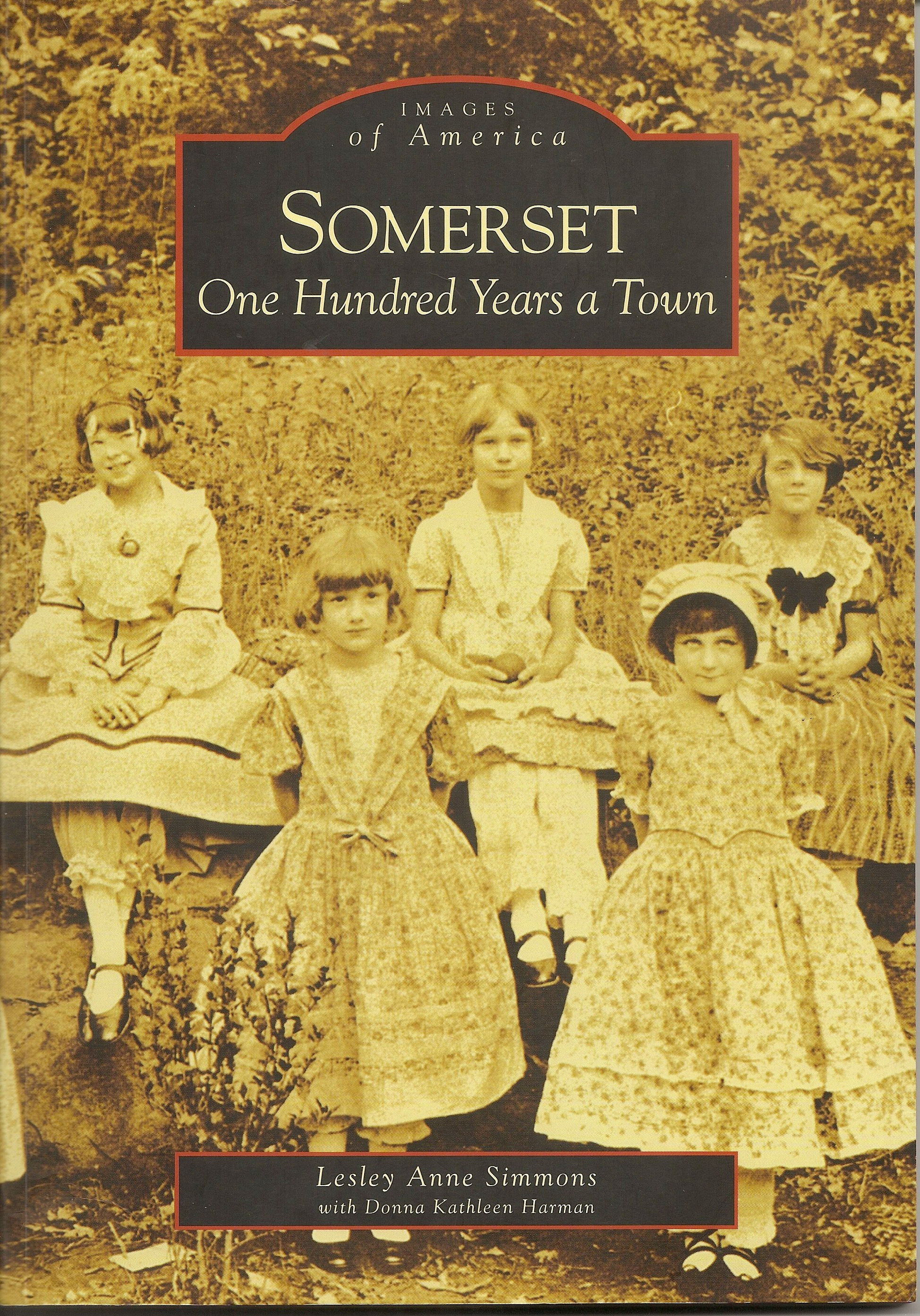 Somerset history book