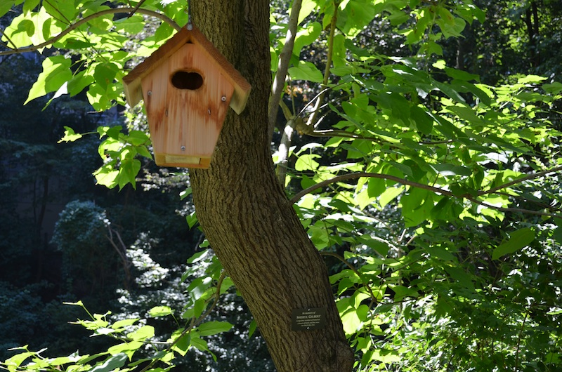 Dedicated Birdhouse for web